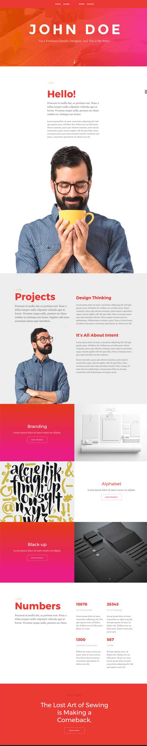 Elegant-themes-demo-11