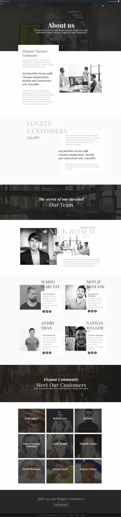 about us layout for divi theme