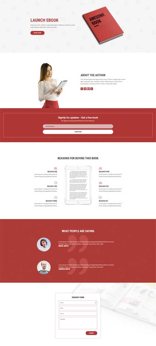 divi layout for book launch