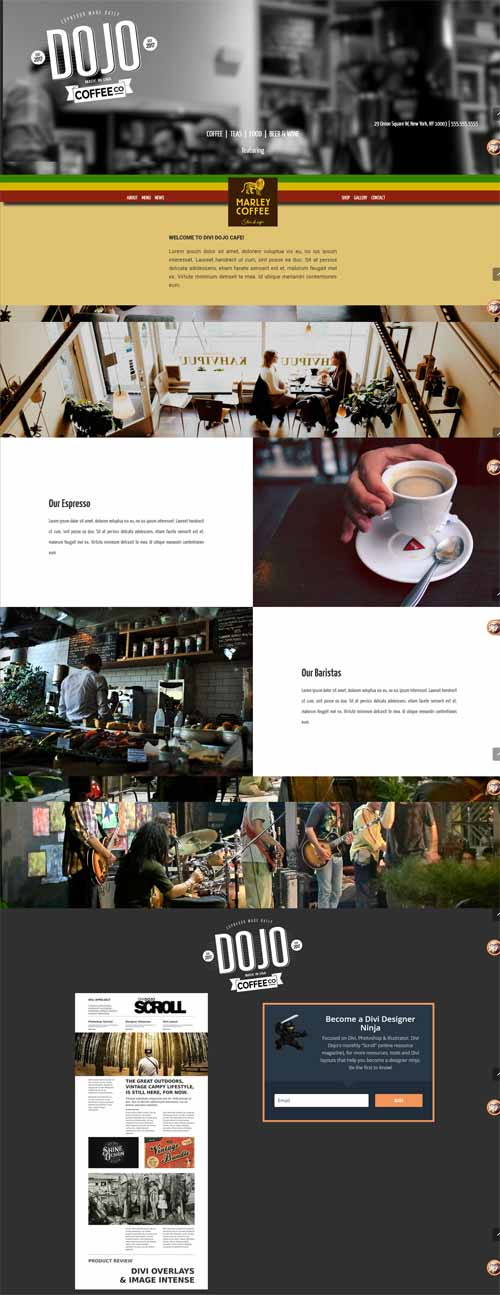 Dojo cafe page layout divi theme layouts