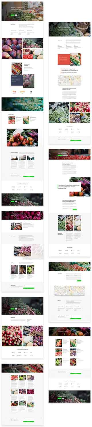 free divi layout for non profit farmers market