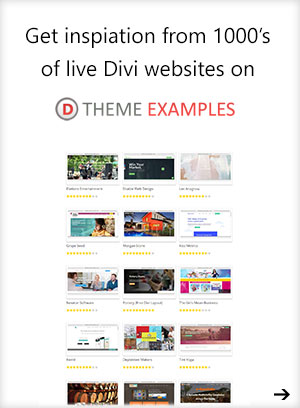 visit divithemeexamples.com
