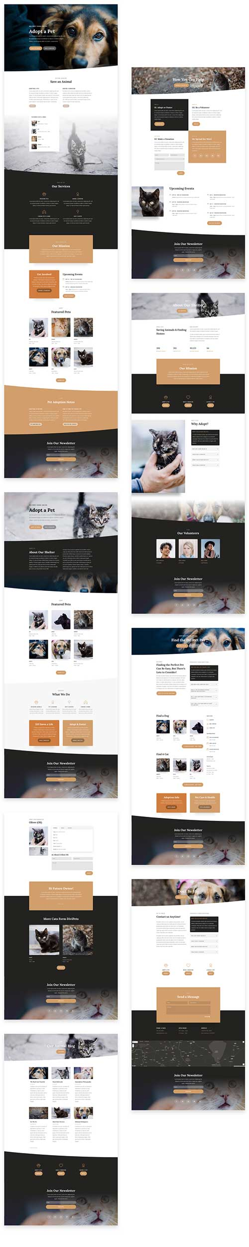 divi layout for animal shelter