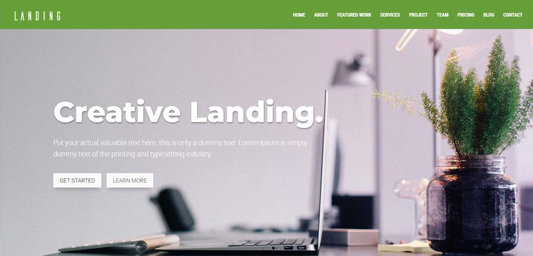 free divi child theme - landing