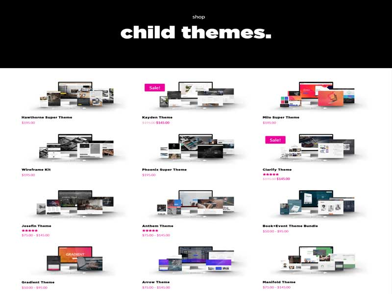 Buy divi child themes at be superfly