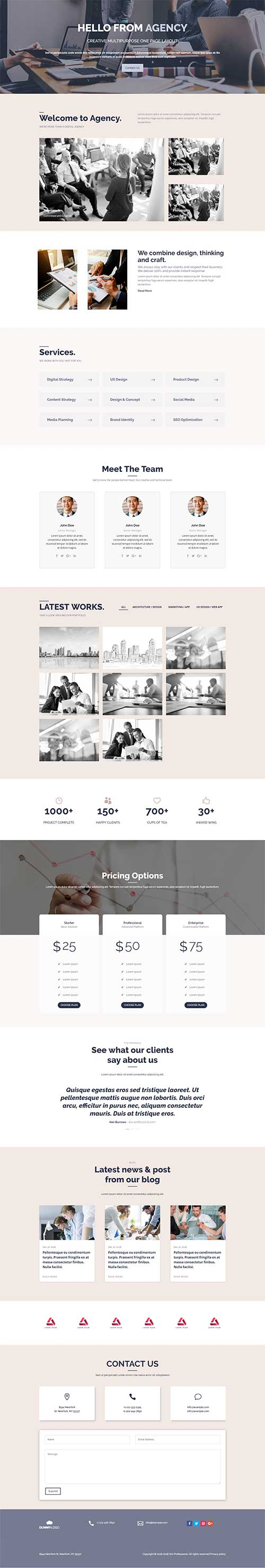 divi web agency layout