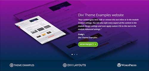 Testimonial Slider (Free layout) • Divi Theme Layouts