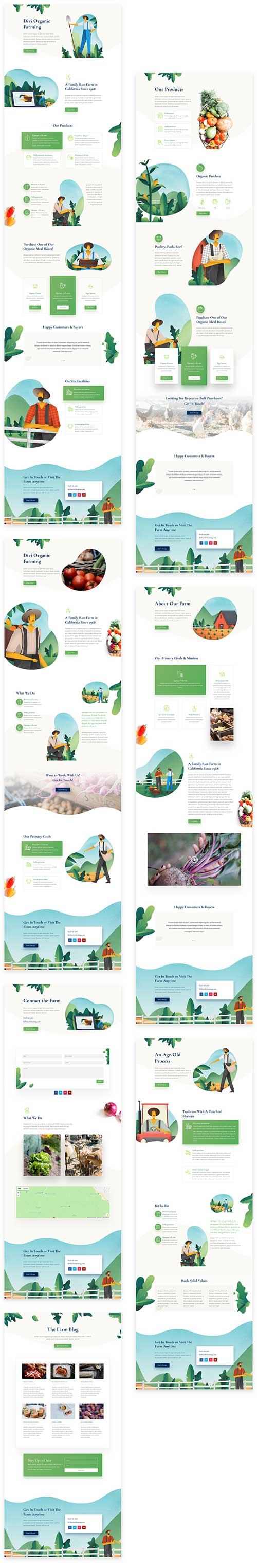 divi farmers layout