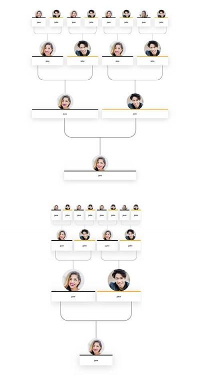 divi family timeline layout