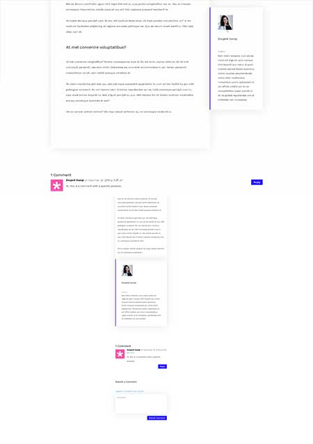 Divi author box template