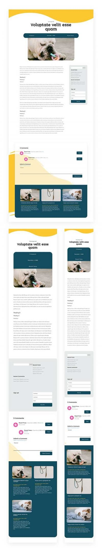 Pet Supply blog post template for Divi