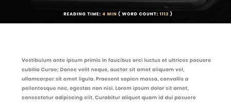 Divi blog post reading time and word count